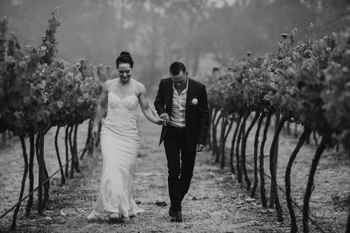 Wedding at Contentious character winery- Tracy Lee Photography